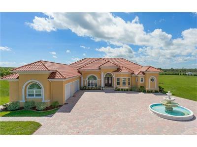 Winter Garden Single Family Home For Sale: 11114 Romance Court