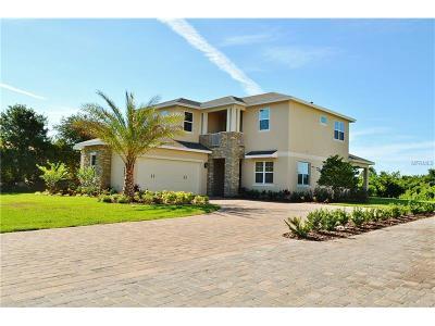 Saint Cloud Single Family Home For Sale: 4802 Rummell Road
