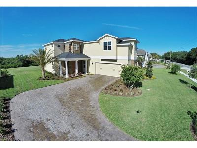 Saint Cloud Single Family Home For Sale: 4798 Rummell Road