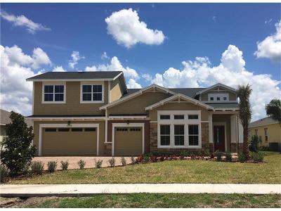 Saint Cloud Single Family Home For Sale: 4774 Rummell Road