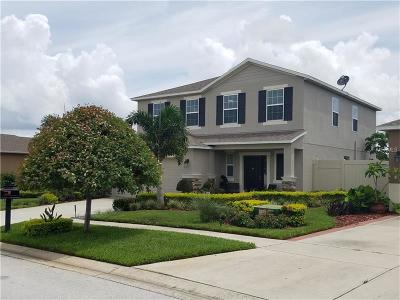 Haines City Single Family Home For Sale: 3051 Patterson Groves Drive