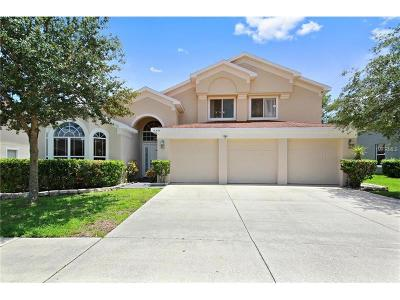 Orlando Single Family Home For Sale: 13494 Falcon Pointe Drive