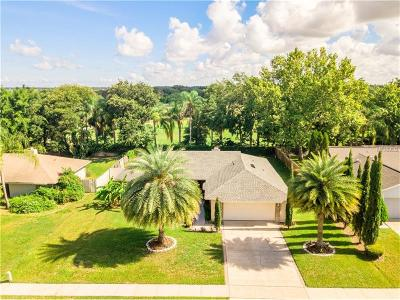 Windermere Single Family Home For Sale: 9235 Palm Tree Drive