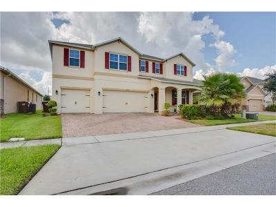Kissimmee Single Family Home For Sale: 2665 San Simeon Way