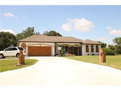 Saint Cloud Single Family Home For Sale: 3061 Lakeshore Boulevard