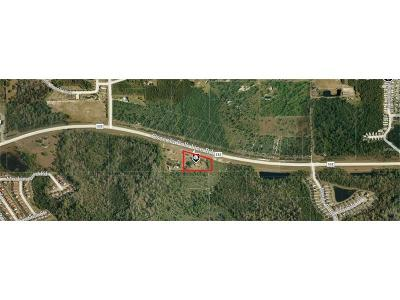 Davenport Residential Lots & Land For Sale: 7120 Osceola Polk Line Road
