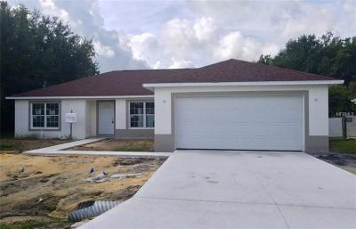 Kissimmee Single Family Home For Sale: 350 Marquee Drive
