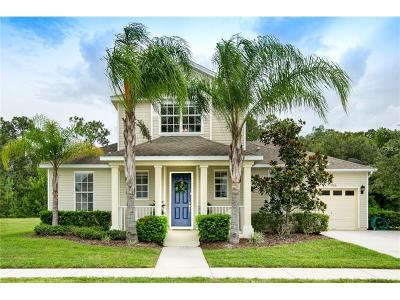 Kissimmee Single Family Home For Sale: 2656 Marg Lane