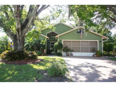 Saint Cloud Single Family Home For Sale: 4200 Natchez Trace Drive