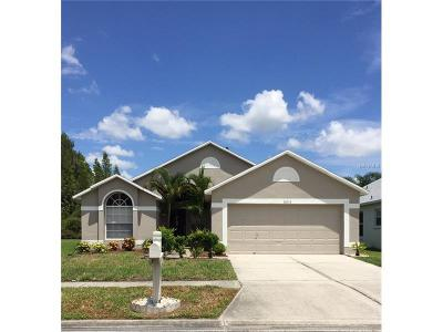 Wesley Chapel Single Family Home For Sale: 30913 Wooley Court