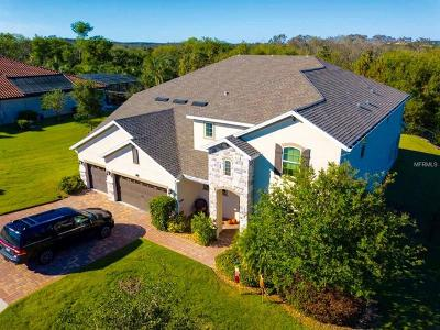 Montverde Single Family Home For Sale: 16728 Caravaggio Loop