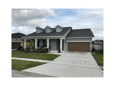 Lake County, Orange County, Osceola County, Seminole County Single Family Home For Sale: 2976 Boating Boulevard