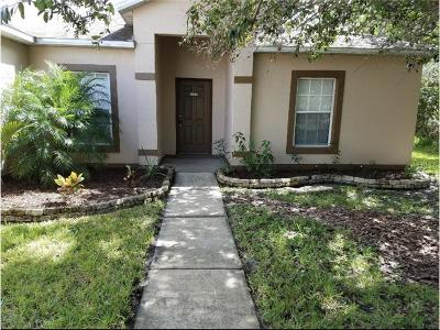Kissimmee Single Family Home For Sale: 347 Montgomery Court