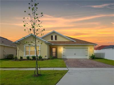 Kissimmee Single Family Home For Sale: 2204 Cypress Lake Place
