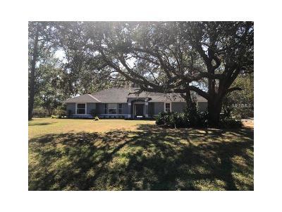 Saint Cloud Single Family Home For Sale: 1415 Englewood Drive