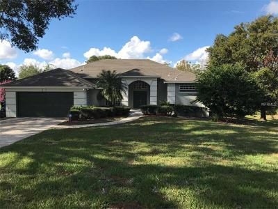 Orlando Single Family Home For Sale: 848 Palm Cove Drive
