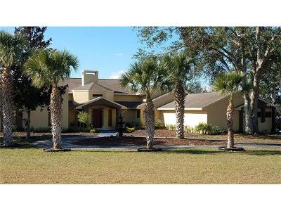 Lake County, Sumter County Single Family Home For Sale: 19621 County Road 455
