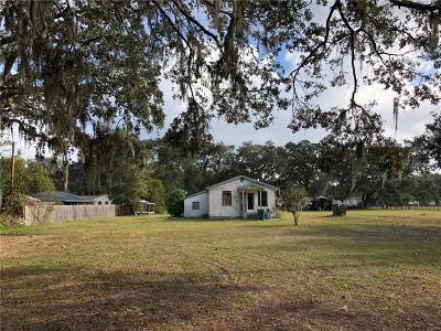 Saint Cloud Single Family Home For Sale: 503 Grape Avenue
