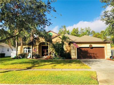 Saint Cloud Single Family Home For Sale: 1925 Lazy Oaks Loop