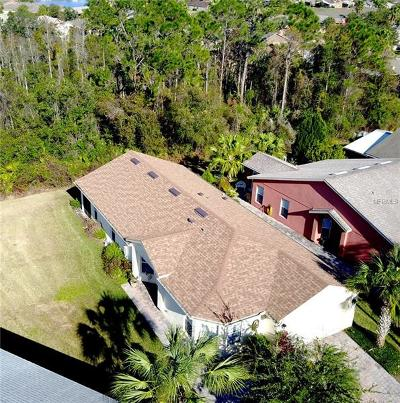 Clermont, Davenport, Haines City, Winter Haven, Kissimmee, Poinciana Single Family Home For Sale: 520 Millifiora Lane
