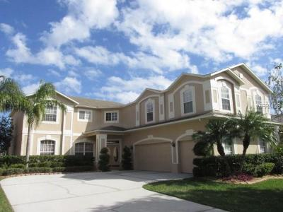 Kissimmee Single Family Home For Sale: 132 Burrell Circle