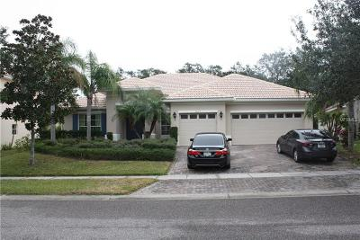 Celebration, Harmony, Kissimmee, Saint Cloud Single Family Home For Sale
