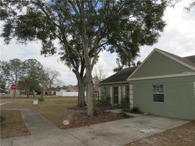 Tampa Single Family Home For Sale: 11025 Brightside Drive