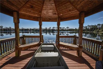 Orlando FL Single Family Home For Sale: $2,799,900