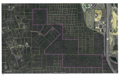 Kissimmee Residential Lots & Land For Sale: Sand Hill Road