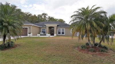 Kissimmee Single Family Home For Sale: 1592 Anorada Boulevard