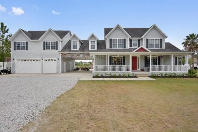 Saint Cloud Single Family Home For Sale: 6966 Big Bend Drive