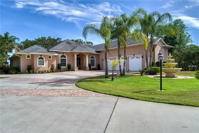 Saint Cloud FL Single Family Home For Sale: $1,250,000