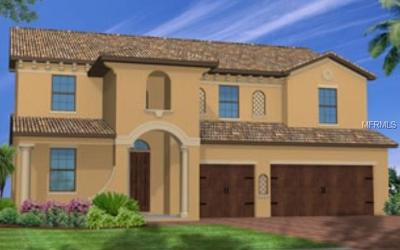 Kissimmee Single Family Home For Sale: 2888 Ciara Court