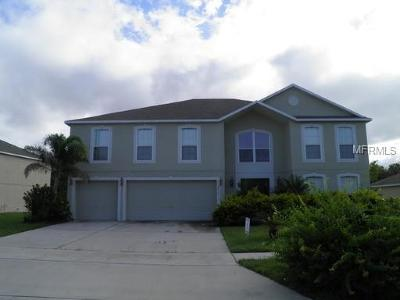 Kissimmee Single Family Home For Sale: 4019 Hely Cate Place