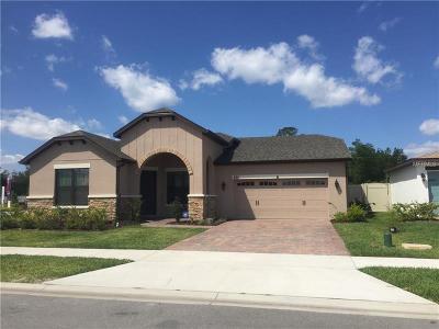 Saint Cloud FL Single Family Home For Sale: $325,000
