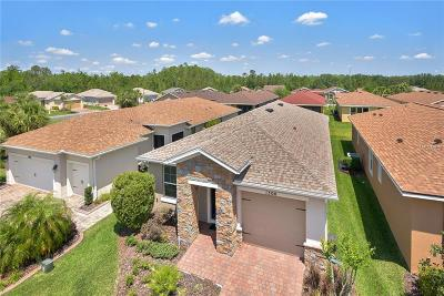 Clermont, Davenport, Haines City, Winter Haven, Kissimmee, Poinciana, Orlando, Windermere, Winter Garden Single Family Home For Sale: 1300 Harbor Ridge Drive