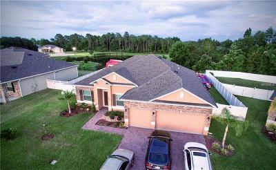 Saint Cloud Single Family Home For Sale: 2021 Pirie Place