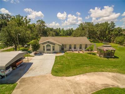 Saint Cloud Single Family Home For Sale: 4525 Kissimmee Park Road