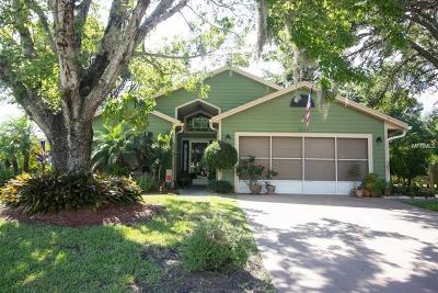 Saint Cloud FL Single Family Home For Sale: $220,000
