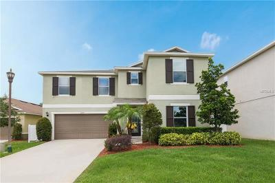 Kissimmee Single Family Home For Sale: 1035 Tourmaline Drive
