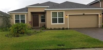 Saint Cloud Single Family Home For Sale: 4860 Grand Vista Lane