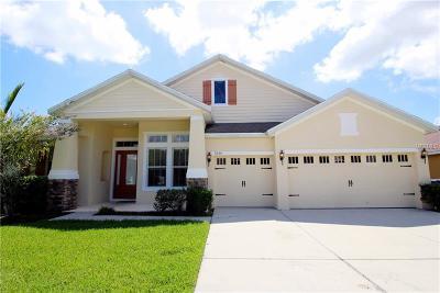 Saint Cloud Single Family Home For Sale: 3320 Pawleys Loop N