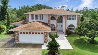 Saint Cloud Single Family Home For Sale: 1805 Eldorado Court