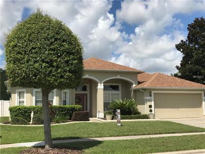 Kissimmee Single Family Home For Sale: 2469 Huron Circle