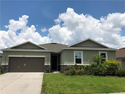 Kissimmee Single Family Home For Sale: 2947 Boating Boulevard