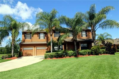 Kissimmee Single Family Home For Sale: 3401 Ambersweet Circle