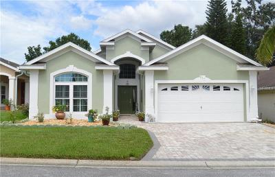 Davenport, Clermont, Kissimmee, Haines City, Poinciana Single Family Home For Sale: 517 Ridge View Drive