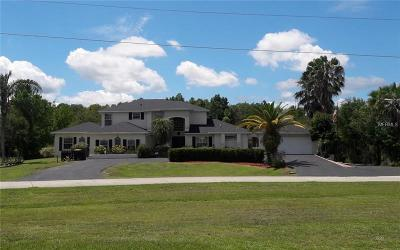 Kissimmee Single Family Home For Sale: 4102 Foxtail Court