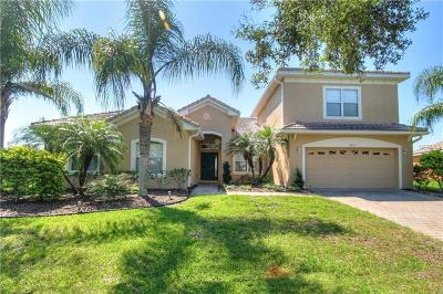 Kissimmee Single Family Home For Sale: 4113 Navigator Way