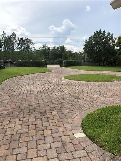 Orlando Single Family Home For Sale: 3733 Percival Road